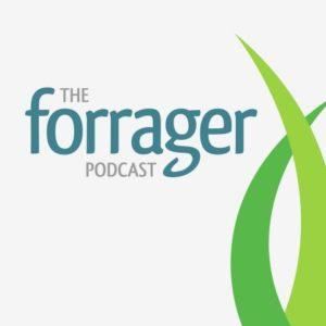 Forrager